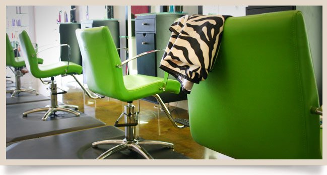 Chameleon salon